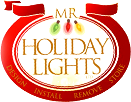 Mr. Holiday Lights
